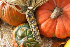 Corn Maize Pumpkin Harvest Green Grocer Stall Stock Photos