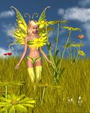 Corn Marigold Fairy in a Summer Field. 3D Digital render of a Corn Marigold Fairy and flower in a sunny summer field Royalty Free Stock Photos