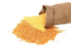 Corn meal and grain in bag Royalty Free Stock Photo