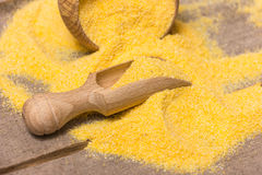 Corn meal Royalty Free Stock Image