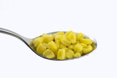 Corn in metal spoon Stock Photography