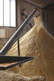 Corn Mill and auger. Milling corn for cattle feed inside a large shed Royalty Free Stock Images