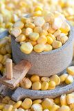 Corn and millstone Stock Images