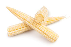 Corn mini group Stock Images