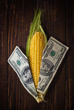 Corn is money Stock Photo