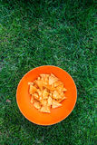 Corn nachos on the picnic Stock Photos