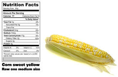 Corn nutritional facts Royalty Free Stock Photos