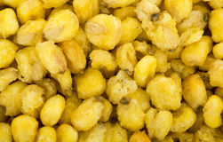 Corn Nuts Roasted and Salted Stock Photo