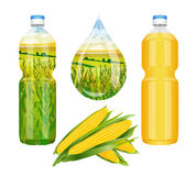 Corn oil in the bottle Royalty Free Stock Images