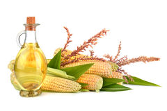 Corn oil with cobs Stock Photos