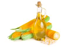 Corn oil in decanter, fresh corn cobs and grains isolated on white background.  Stock Images