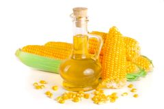 Corn oil in decanter, fresh corn cobs and grains isolated on white background.  Royalty Free Stock Images