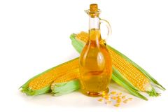 Corn oil in decanter, fresh corn cobs and grains isolated on white background.  Stock Photo