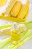 Corn oil Stock Image
