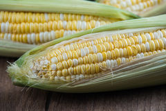 Corn on old wooden background Stock Image