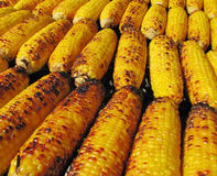 Corn On Grill Stock Photos