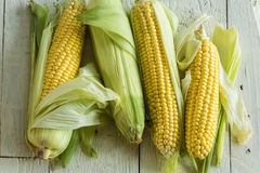 Free Corn On The Cob Royalty Free Stock Photos - 33009918