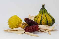 Corn and ornamental pumpkins Stock Photos