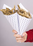 Corn in a paper cone Stock Image