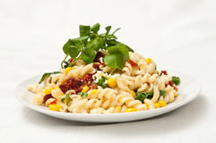 Corn and pasta salad Stock Photography