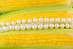 Corn & pearls. Pearls isolated on corn background Royalty Free Stock Photography
