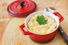 Corn perridge in red bowl Stock Images