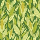 Corn plants seamless pattern background Stock Photography