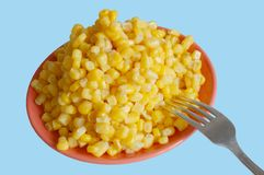 Corn on plate Stock Photo