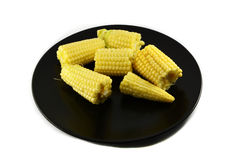 Corn on plate Stock Images