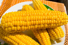 Corn on the plate. Corn on the plate, very bright Stock Images