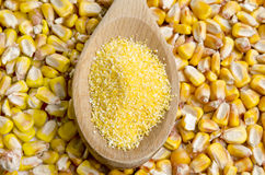 Corn polenta Royalty Free Stock Images