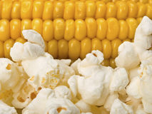 Corn and popcorn Stock Photos