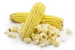 Corn, Popcorn Stock Photo