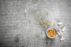 Corn for popcorn. Stock Photos