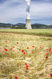 Corn poppies and nuclear power station Stock Photos