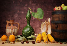 Corn and pumpkin Stock Photography