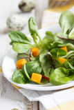 Corn and pumpkin salad Royalty Free Stock Photography