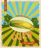 Corn retro poster Stock Photo