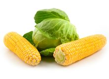 Corn and ripe green cabbage Royalty Free Stock Images