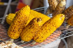 Corn roasted on charcoal. Corn roasted on charcoal in Thailand Stock Images