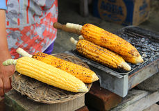 Corn is roasted on the grill. Stock Photos