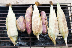 Corn roasted and grilled on charcoal stove, a very famous Thai s Stock Image