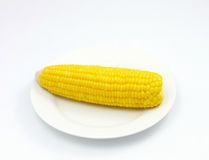 Corn roasted . Corn roasted thai style isolate Royalty Free Stock Image