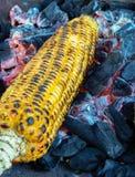 Corn roasting royalty free stock image