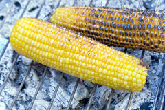 Corn roasting barbecue Stock Photography