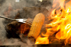 Corn roasting barbecue on coal fire Royalty Free Stock Photo