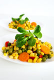 Corn salad Royalty Free Stock Images