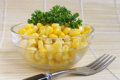 Corn salad Royalty Free Stock Photography