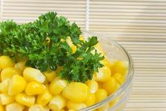 Corn salad Royalty Free Stock Images