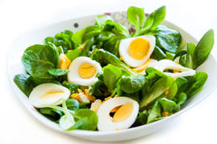 Corn Salad with Egg Stock Photography
